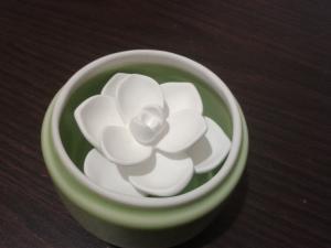 rose+a+parfumer+(1)_convert_20111121041829.jpg