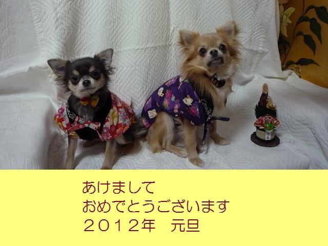 年賀状2012②