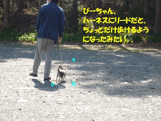 P1370657.jpg