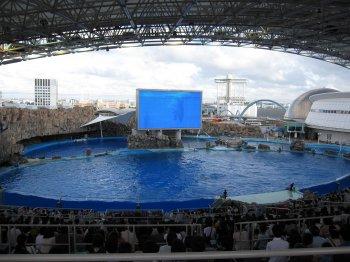 名港水族館
