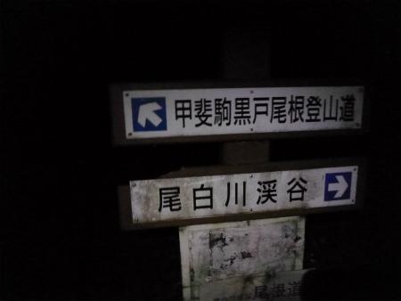 登山道分岐
