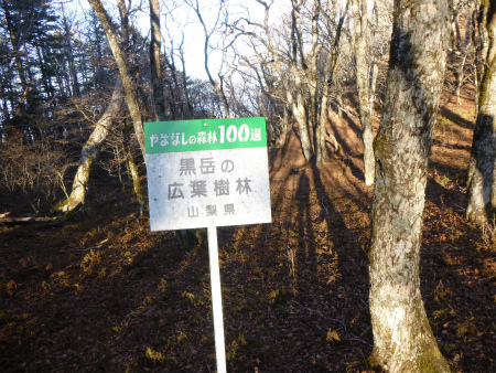 095広葉樹林看板