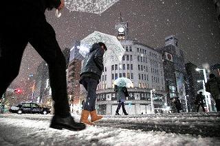雪 東京2