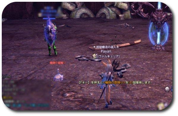 TERA_ScreenShot_20120205_223127.jpg