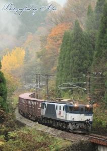 3084レ(=EF64-1003牽引)