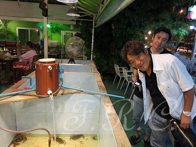 プーケット夜遊びツアーはプーケット島風案内人のオプショナルナイトライフ