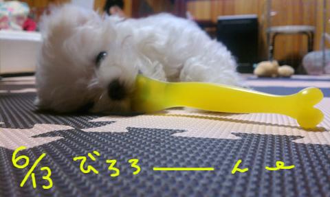 IMAG0657.jpg