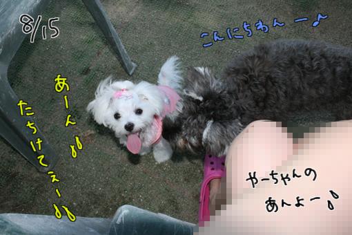 IMG_9860.jpg