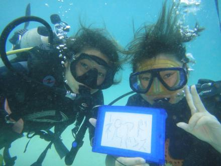 タオ島 ダイビング お客さま