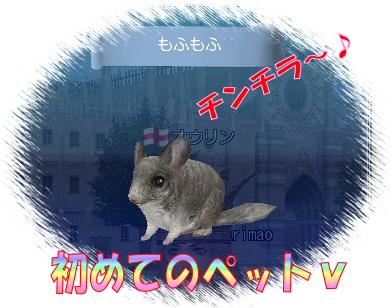 2012021701.jpg