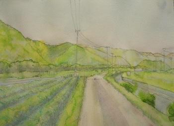 淡彩画の描き方4