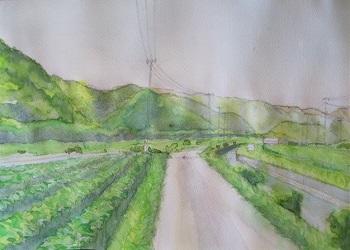 淡彩画の描き方5