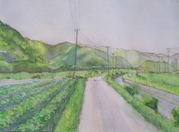 淡彩画の描き方6