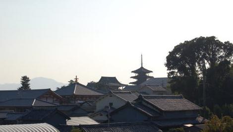 天満池より法隆寺を眺める
