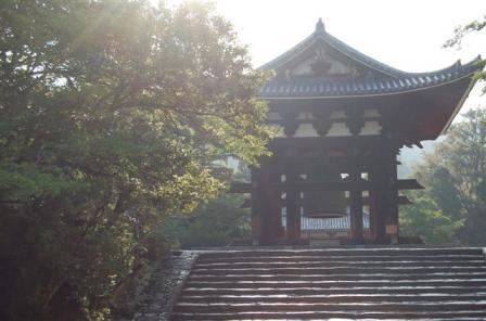 早朝 東大寺鐘楼、奈良太郎