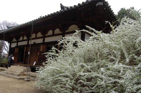 海龍王寺 本堂