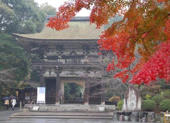 滋賀2008 11.24 082.jpg