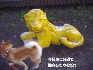 vs ライオン-4