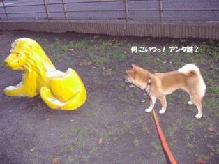 vs ライオン-1