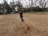 寒々しい代々木公園