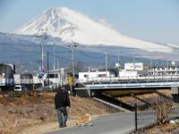富士山の見える川沿い