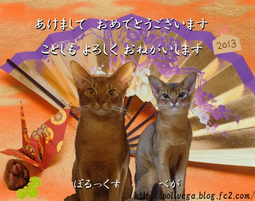 N2013_01thumb_.jpg