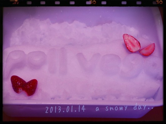 snowlogo_RT.jpg