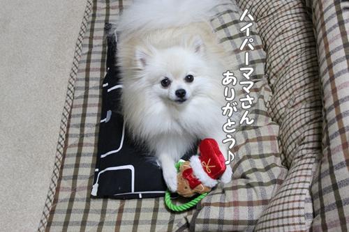 1217oyabaka6.jpg