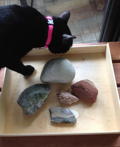 プリンスエドワード島の石