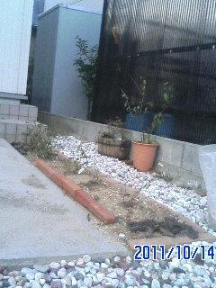 玄関前花壇ビフォー