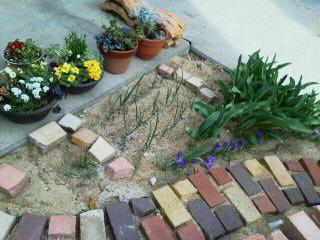 小道花壇アップ