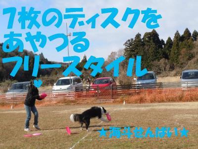 DSCN2731_convert_20111219182250.jpg
