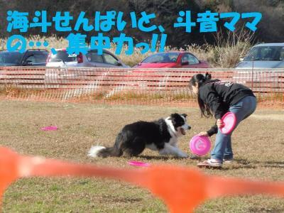 DSCN2733_convert_20111221080137.jpg