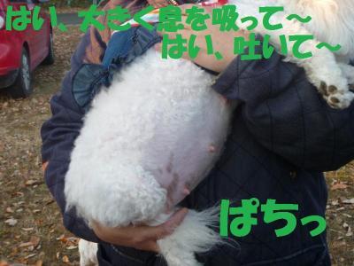 P1000483_convert_20111214141219.jpg
