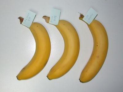 バナナの保存 保存状態初日