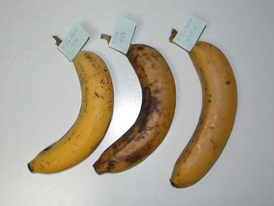 バナナの保存 保存状態3日目