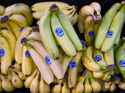 青いバナナ発見