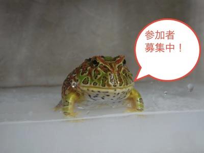 17(2)_convert_20120617194822.jpg
