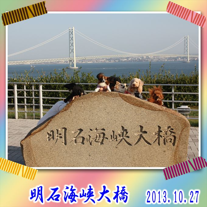 25_20131125135850c15.jpg
