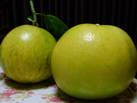 12.19果物 036