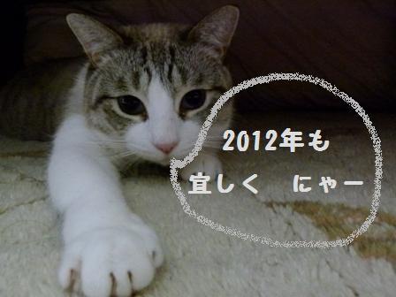 2012.1.1 004