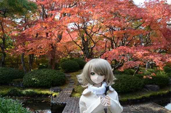 小隠里@美しき紅葉の天使の里