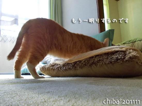 chiba11-11-91x.jpg