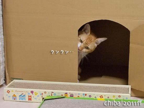 chiba11-11-92x.jpg