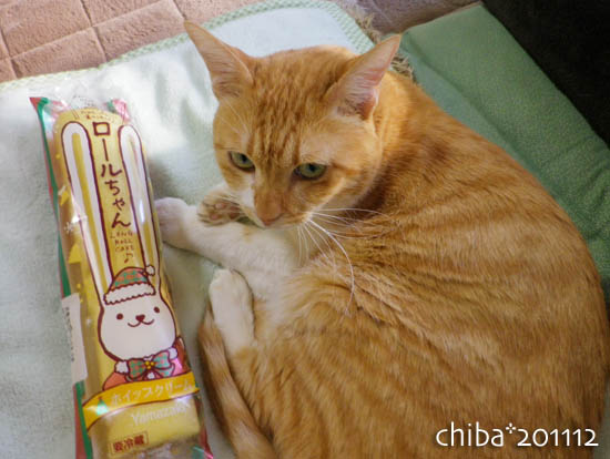 chiba11-12-136.jpg