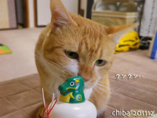 chiba11-12-205.jpg