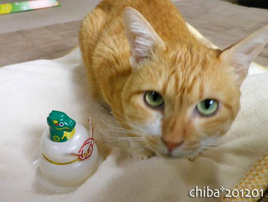 chiba12-01-04.jpg