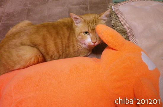 chiba12-01-133.jpg