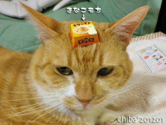 chiba12-01-152.jpg
