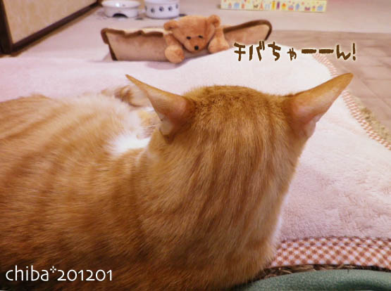 chiba12-01-166.jpg